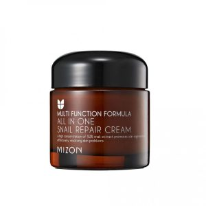 Mizon All in One Snail Repair Cream -kosteusvoide